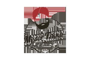 mister-logo